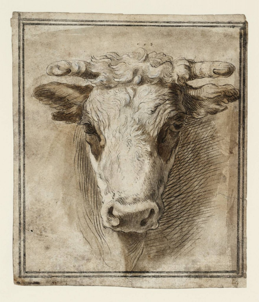 Front View of a Bull's Head null by Joseph Highmore 1692-1780