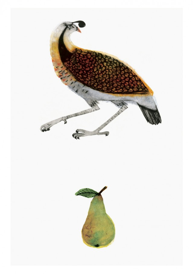 Partridge and Pear