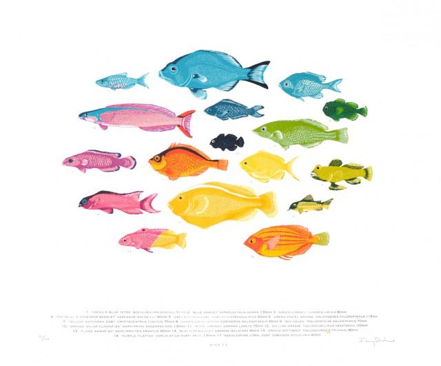 SpectrumFish