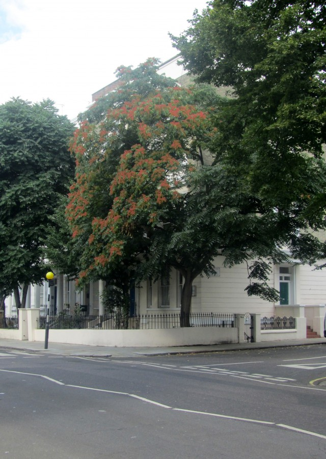 westbourne park road (2) w11