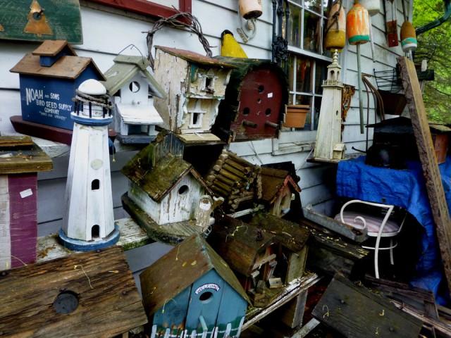 Bird houses & Light houses