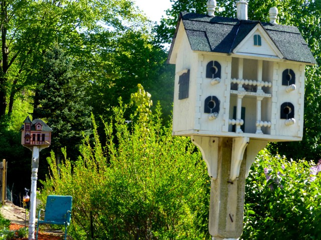 Birdhouses in Massachusetts
