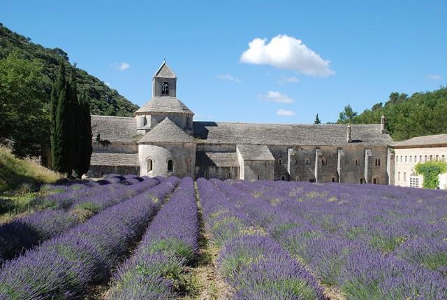 abbaye-notre-dame-de-senanque