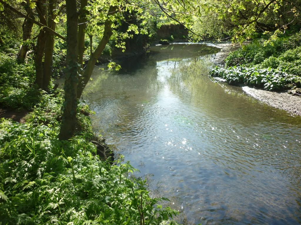 River Brent, Pitshanger