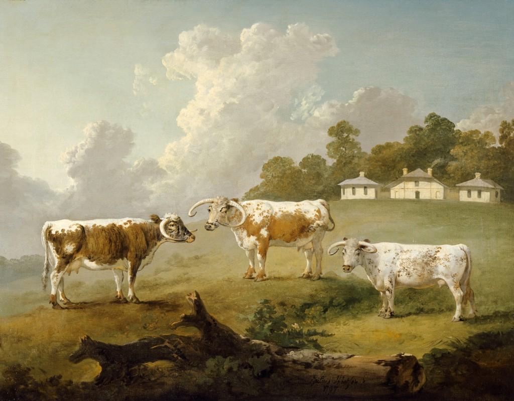 dairy-ibbetson-j990019-1