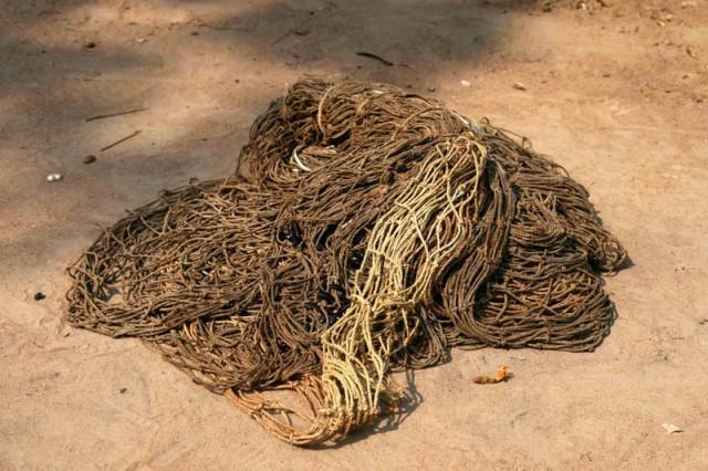 mbuti nets