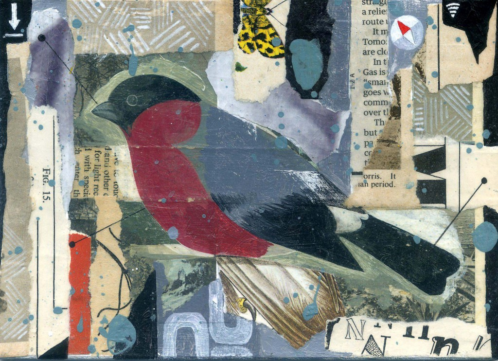 The Bullfinch 2014